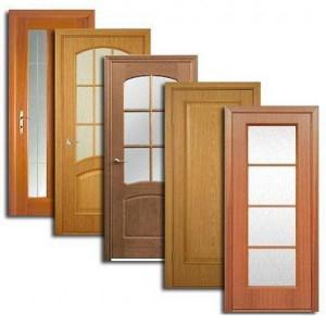 Двери, дверные блоки Электроуглей