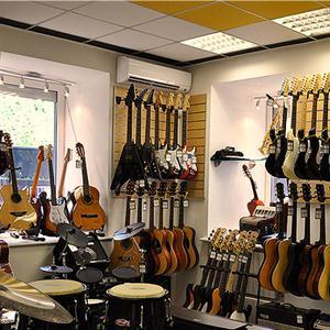 Музыкальные магазины Электроуглей
